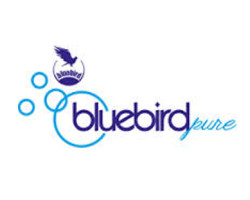 blue-bird-pure